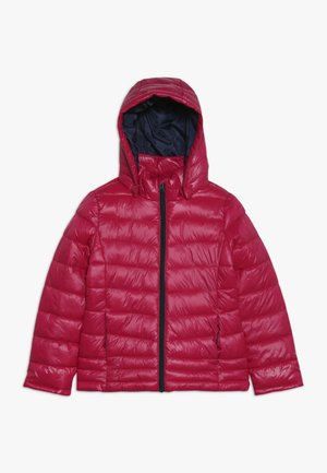 NKFMOVE - Winter jacket - cerise