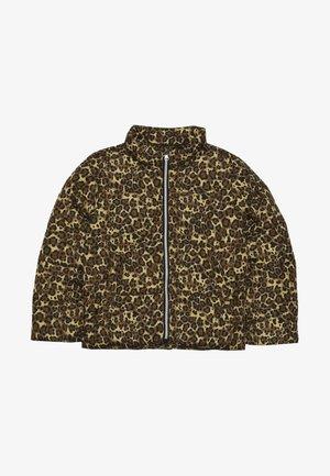 NKFMISTI JACKET LEO - Winter jacket - bronze brown
