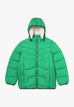 NKMMUS - Winter jacket - jolly green