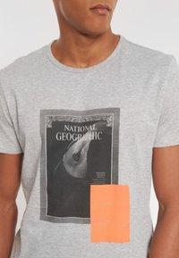 National Geographic - Print T-shirt - light grey melange - 2