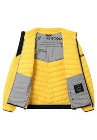 National Geographic - Winter jacket - lemon chrome - 7