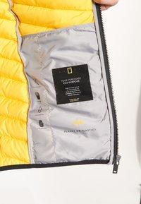 National Geographic - Winter jacket - lemon chrome - 6