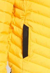 National Geographic - Winter jacket - lemon chrome - 5