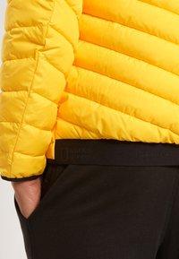 National Geographic - Winter jacket - lemon chrome - 3