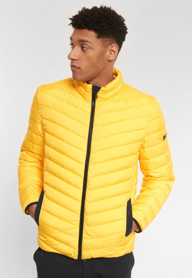 Winter jacket - lemon chrome