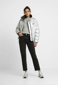 Nike Sportswear - FILL SHINE - Vinterjakke - metallic silver/black - 1