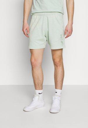 WASH - Pantaloni sportivi - pistachio frost/sail