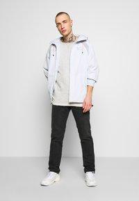 Nike Sportswear - Kurtka wiosenna - pure platinum/light smoke grey - 1