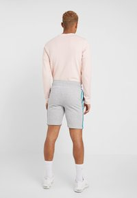 New Look - SIDE TAPE - Shorts - light grey - 2