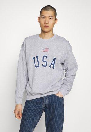 USA FLAG PRINT - Mikina - grey