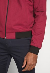 New Look - ENTRY - Chaquetas bomber - dark burgundy - 5
