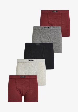 Panty - grey/bordeaux/black