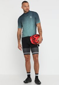 ODLO - STAND UP COLLAR FULL ZIP ELEMENT - T-Shirt print - dark slate/arctic - 1