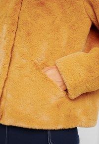 ONLY - ONLVIDA JACKET - Winterjas - golden yellow - 5