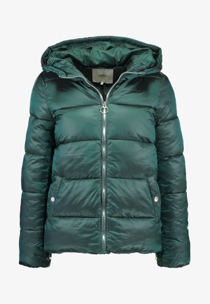ONLNAIOMI  - Zimní bunda - ponderosa pine