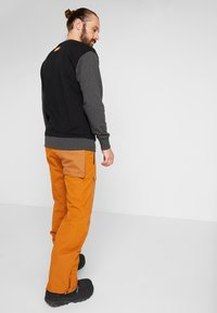 O'Neill - UTLTY  - Pantalon de ski - glazed ginger - 2
