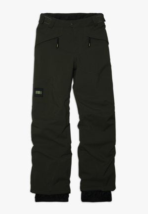 ANVIL PANTS - Snow pants - forest night