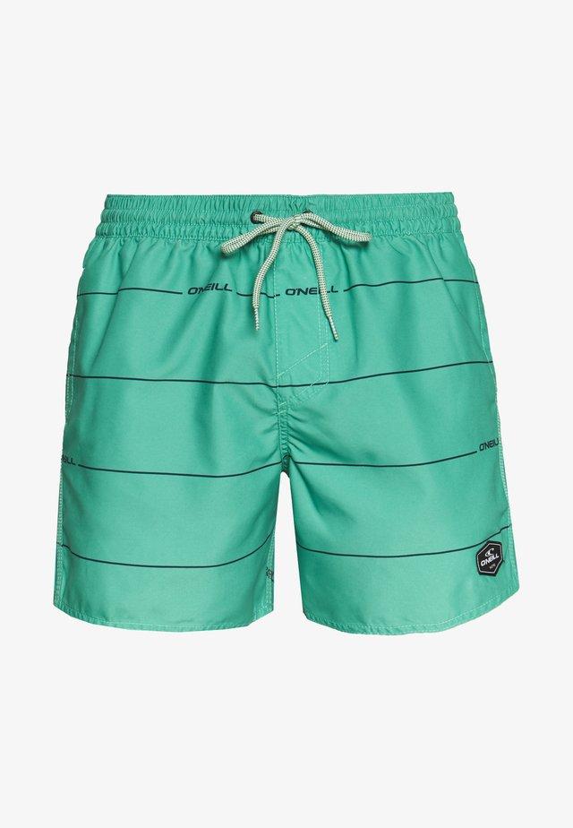 CONTOURZ - Plavky - green/blue