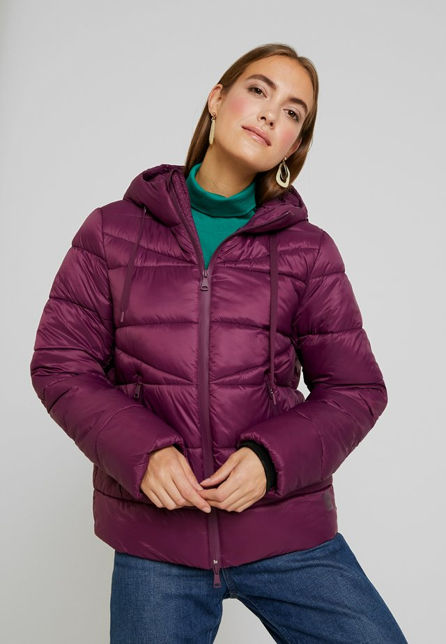 JACKET QUILTED PUFFER OPTIC - Talvitakki - fresh plum