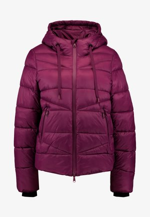 JACKET QUILTED PUFFER OPTIC - Winter jacket - fresh plum