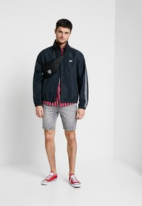 Only & Sons - ONSROD - Shorts - grey denim - 1