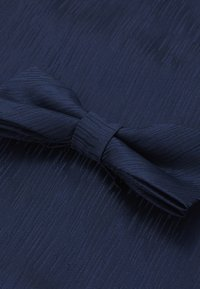 Only & Sons - ONSTANNER SATIN  BOW TIE BOX - Pocket square - dress blues - 4
