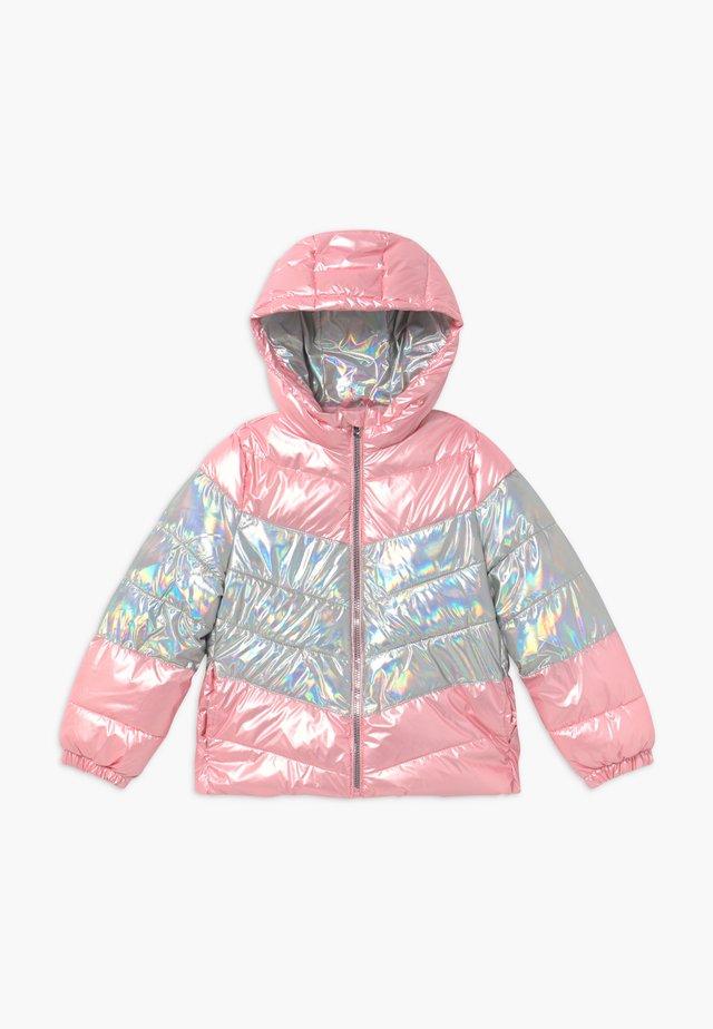 JACKET BICOLOR - Winter jacket - glacier gray