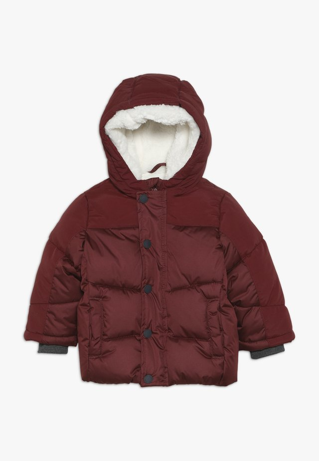 BABY JACKET WITH HOOD - Wintermantel - burgundy