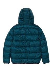 OVS - WITH HOOD AND ZIP - Chaqueta de invierno - teal green - 1