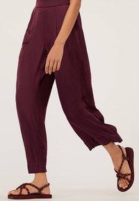 OYSHO - Pantalon classique - bordeaux - 3