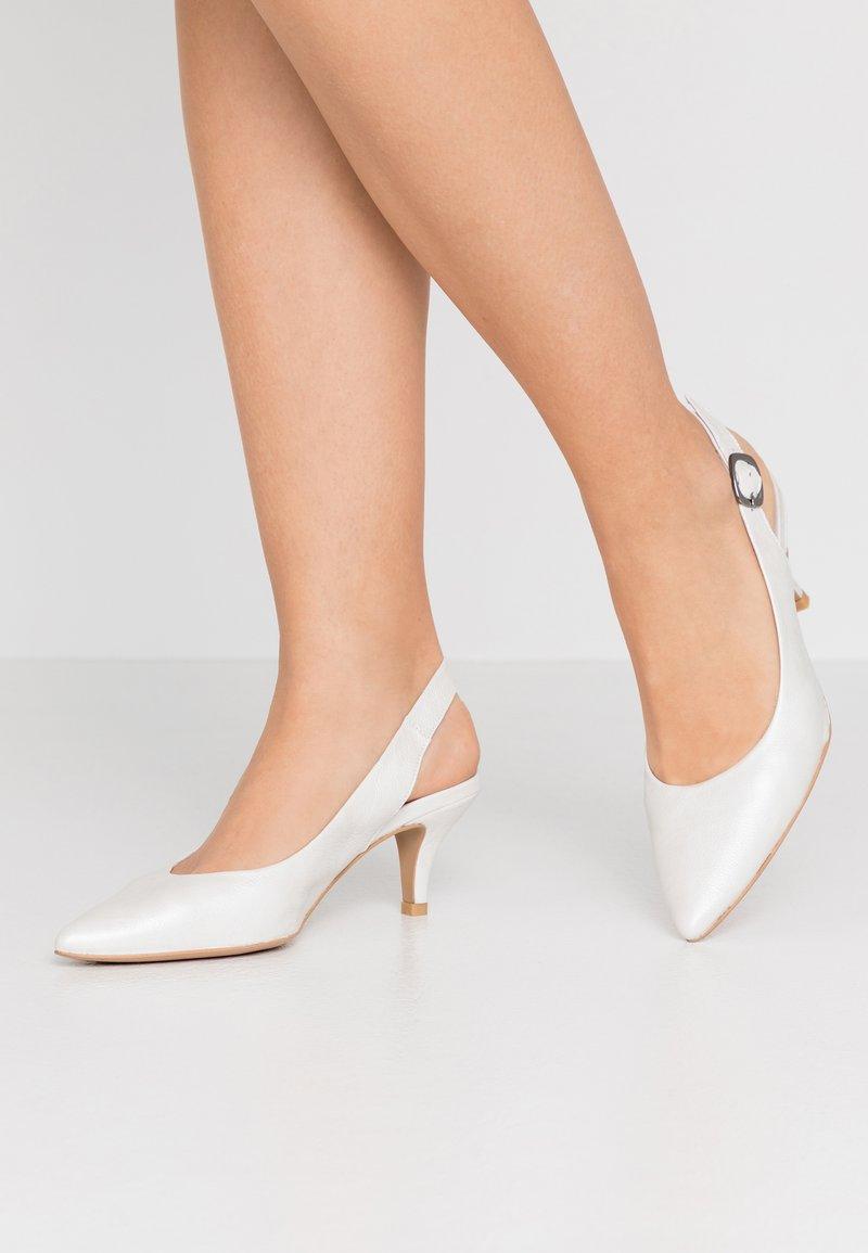 PERLATO - Classic heels - colibri natural