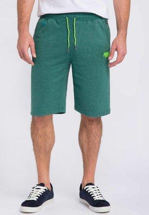 Shorts - rain forest