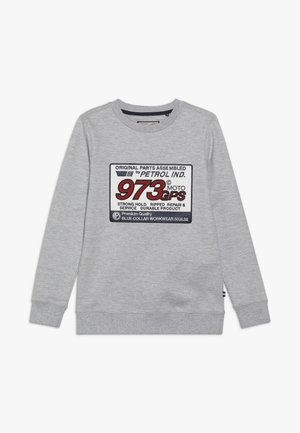 Sweatshirts - light grey