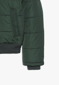 Petrol Industries - Winter jacket - night green - 3