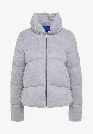 PERVENIRE PIUMINO - Chaqueta de invierno - grey