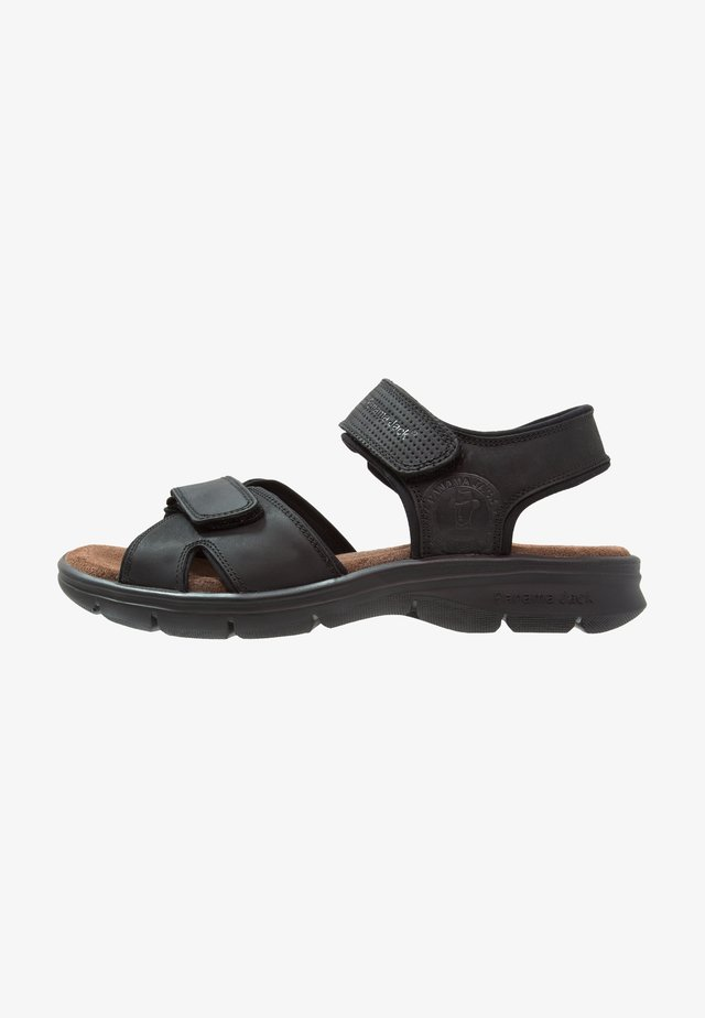 SANDERS BASIC  - Walking sandals - black
