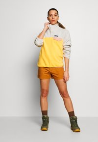 Patagonia - STAND UP - Sports shorts - umber brown - 1