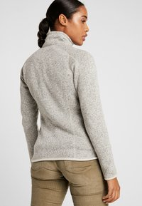 Patagonia - BETTER SWEATER - Giacca in pile - pelican - 2