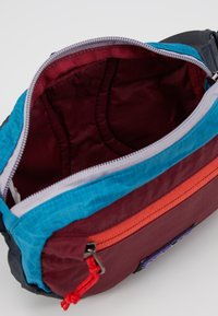 Patagonia - ULTRALIGHT BLACK HOLE MINI HIP PACK - Bum bag - patchwork: roamer red - 3