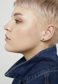 Pieces - PCEMSE EARRINGS 6 PACK SET - Øredobber - gold colour - 1