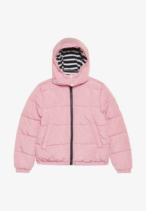 CLOWN - Winter jacket - charme