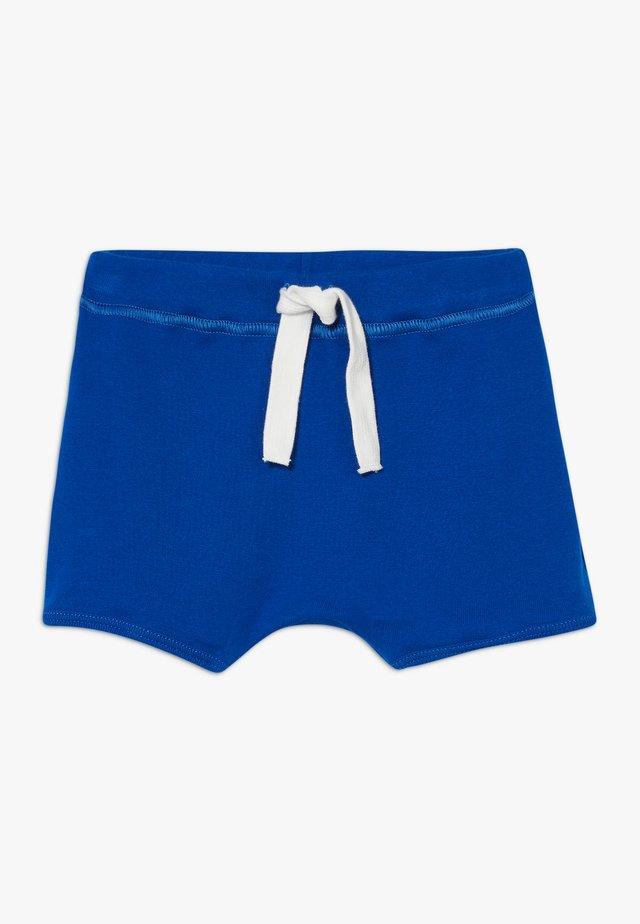 Shorts - surf
