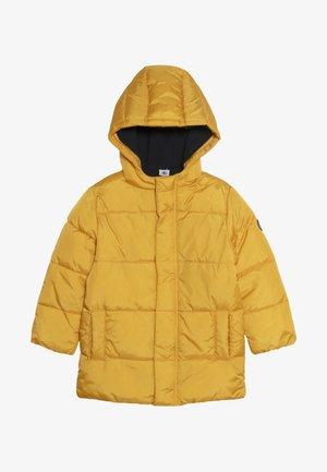 CERCUS - Winter jacket - yellow