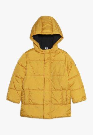 CERCUS - Winterjacke - yellow