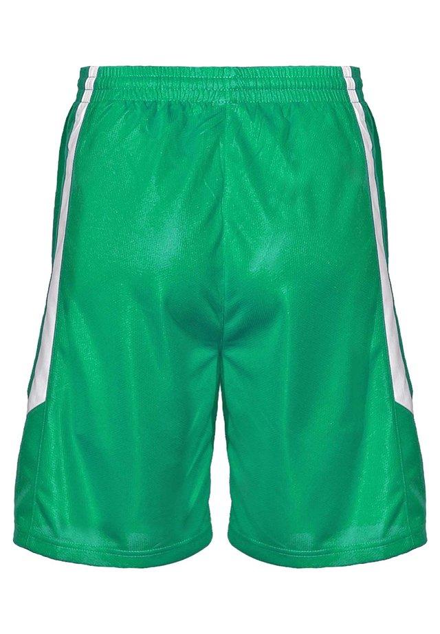 Sports shorts - vert-blanc