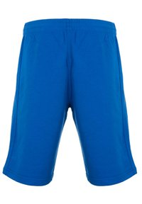 PEAK - Sports shorts - bleu - 1