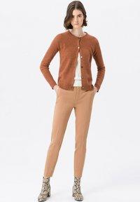 PETER HAHN - Cardigan - brown - 1