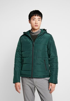 BRUCE PUFFER JACKET - Light jacket - dark green