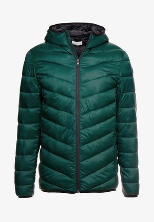 Light jacket - dark green
