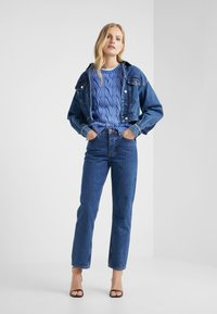 Polo Ralph Lauren - Jumper - maidstone blue - 1